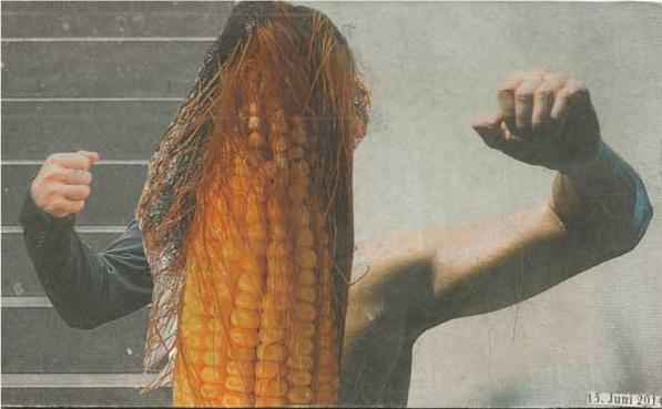 Collage Maiskolben mit erhobenen Männerarmen