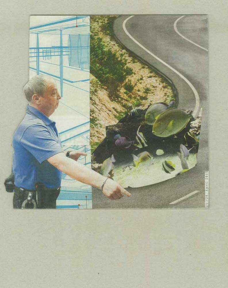 Collage Polizist winkt schwebende Fisch auf Autobahn raus