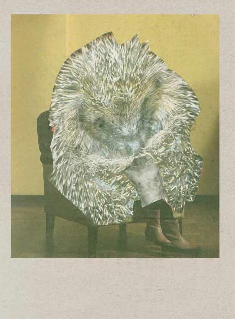 Collage Igel auf Sessel nackten Oberkörper eines Menschen
