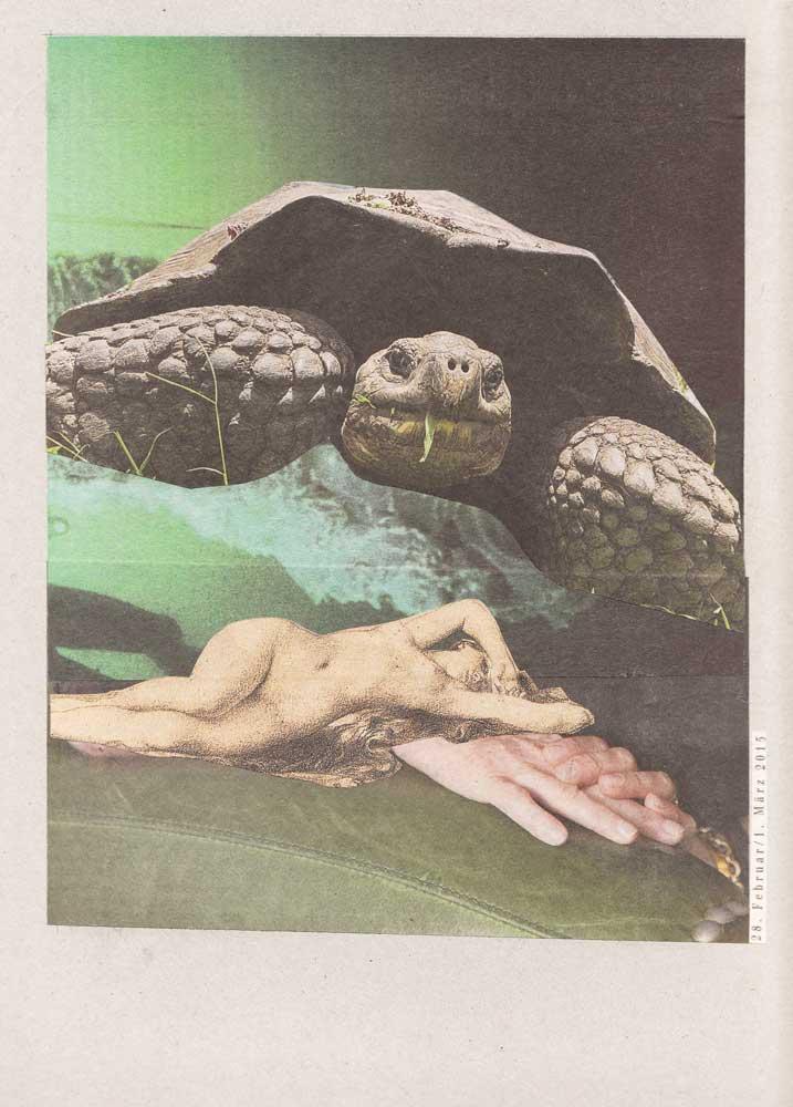 riesige Schildkröte über auf Händen liegender nackter Frau